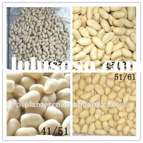 Shandong Blanched Peanut kernel