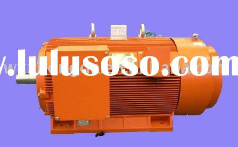 YE2 Series High Efficiency Electric Motors