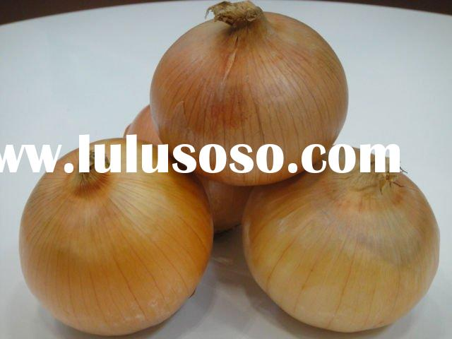 fresh yellow onion 2011