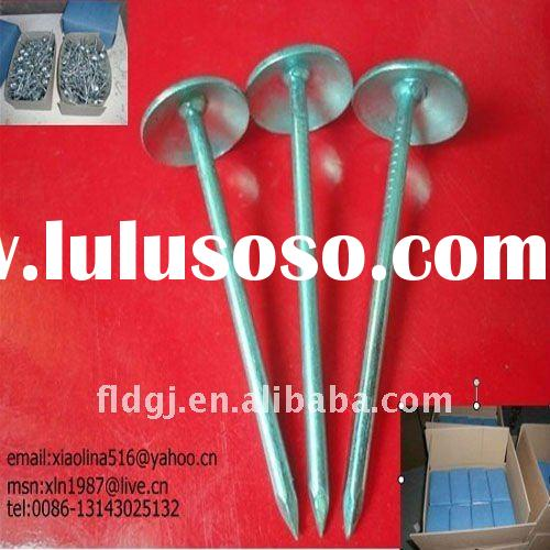 galvanized umbrella roofing nails with smooth/twist shank (factory)