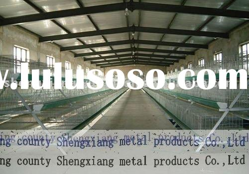low carbon steel wire chicken battery cages poultry equipment layer chicken cages with Auto water sy