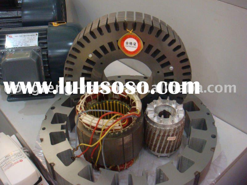 rotor and stator for wind electric motor
