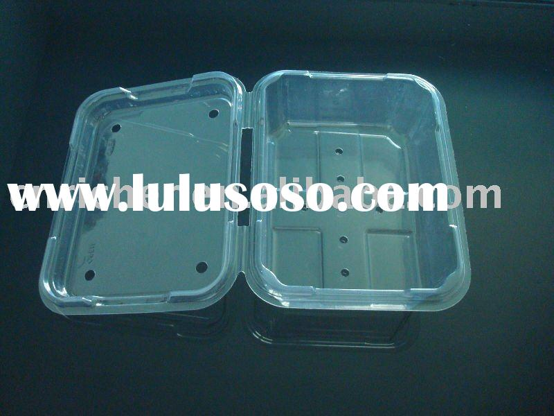 Disposable plastic fruit container for takeaway food