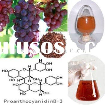 Grape Seed Extract for Healthcare,Beverages and Nutrition