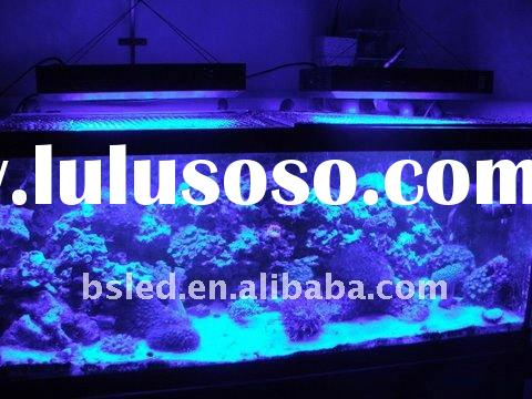 Baisheng Semiconductor Lighting Co.,Ltd want solo distributor in CA,USA for aquariums Cree LED light