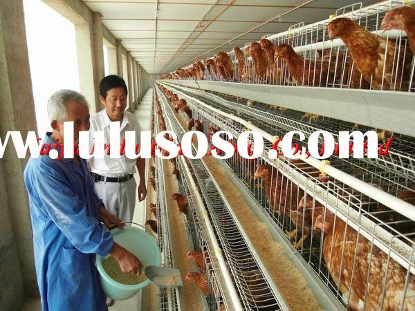 poultry production in nigeria pdf