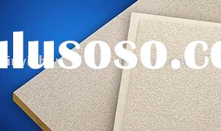 acoustic ceiling panel
