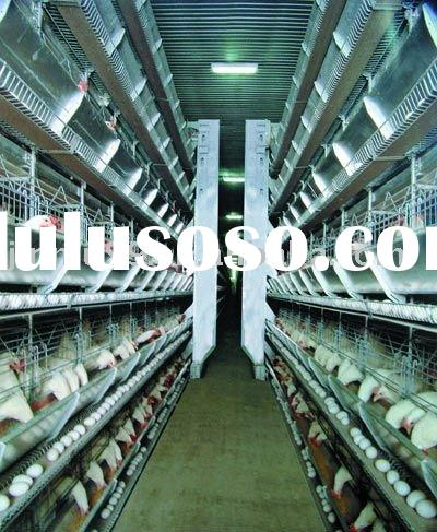 automatic poultry cages