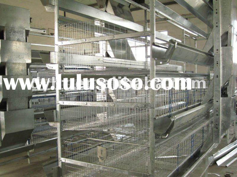 automatic poultry feeding system the feeder
