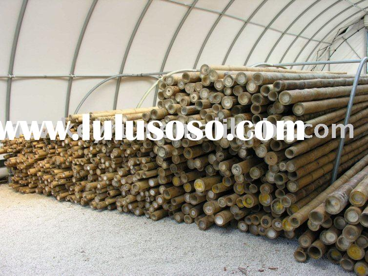 bamboo poles/canes/sticks