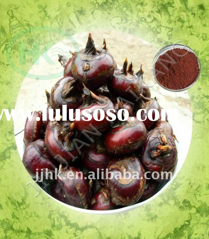 High quality Eleocharis dulcis/ Plant Extract Powder/Water-chestnuts Extract