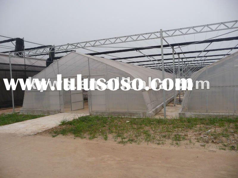 Special-purpose agricultural greenhouse of vegetables