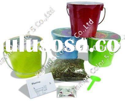 Flower  Picture on Planting Pot Gift Mini Pot Terrocatto Pot Flower Planter Seed