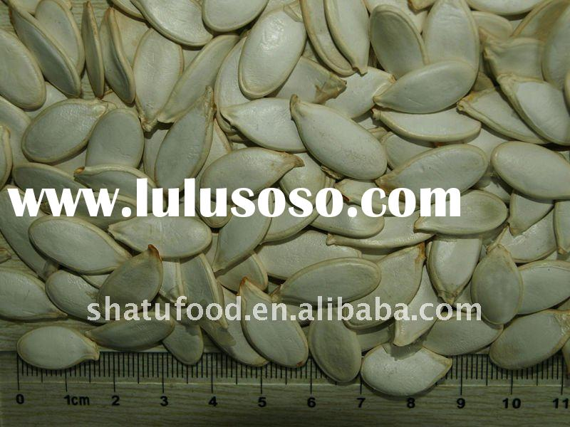 Chinese shine skin pumpkin seeds kernel