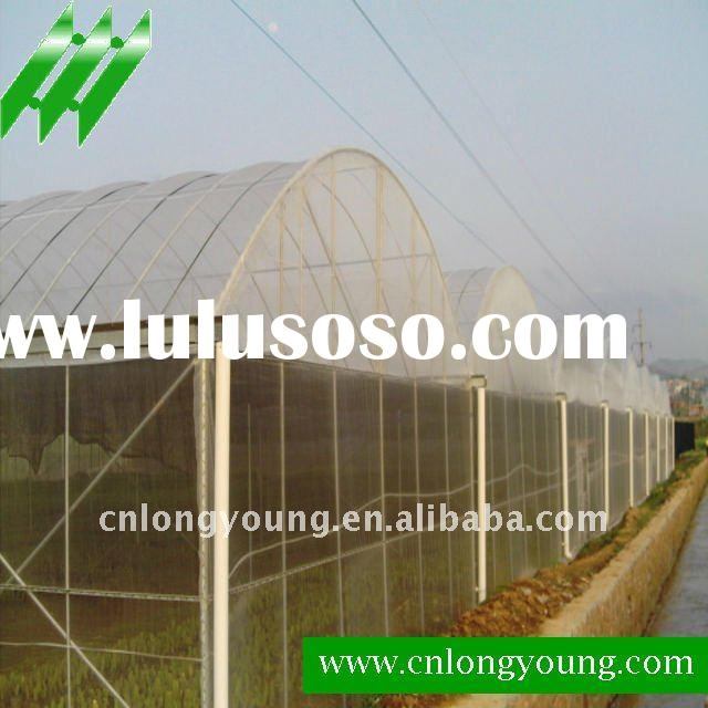 Economy Professional Industrial Greenhouse Agricultural