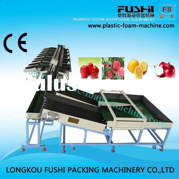 NEW TECHNIQUE Double Row Electronic Fruit Sorting Machine