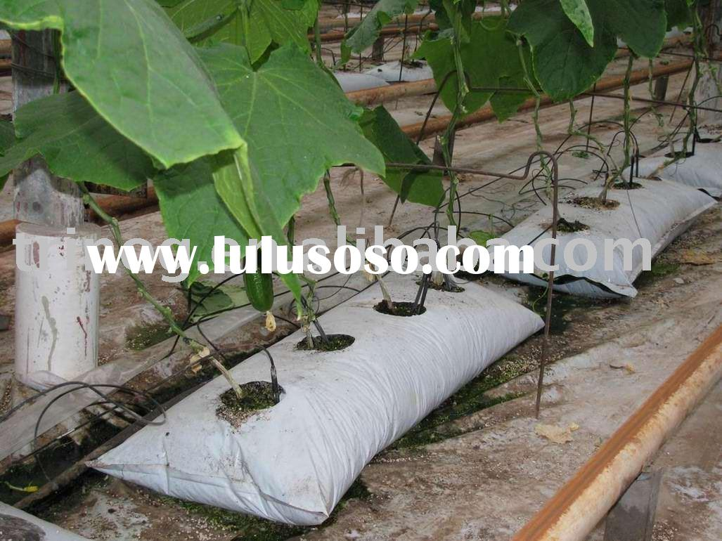 Soilless agriculture wikipedia soilless agriculture for Soil less farming