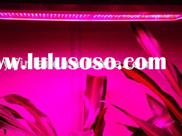 600W grow light system