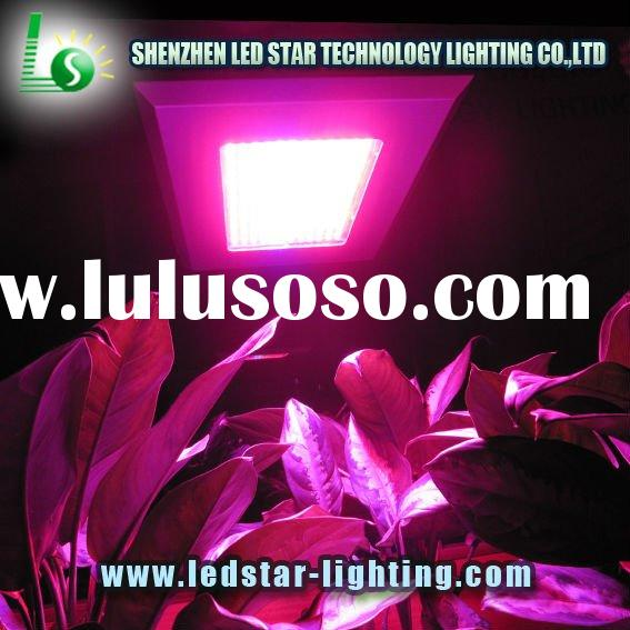 Garden Greenhouse 300W indoor led grow light