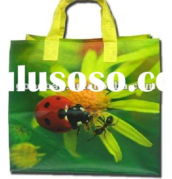 laminated pp non woven promotional bags
