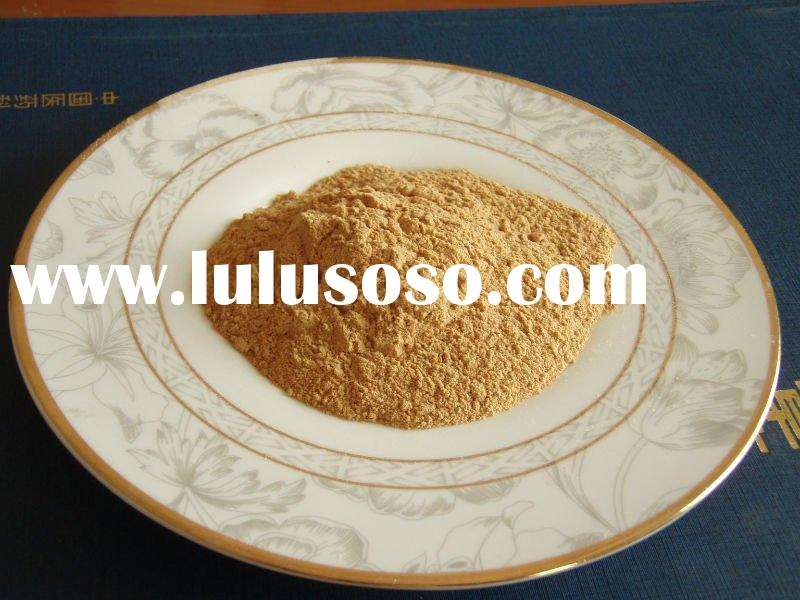 Wild Ginseng Plant Plant Panax Ginseng Root p e