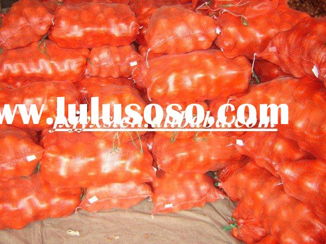 10kg Mesh Bag Red Onion