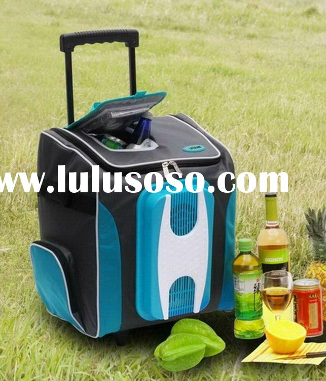 12V Foldable Car Fridge