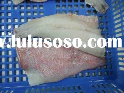 Fillet red fish fillet red fish manufacturers in lulusoso for Red fish fillet