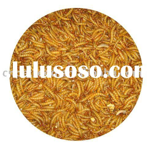 bulk dried fish and reptile dried mealworm