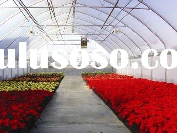 flower tunnel film commercial greenhouse