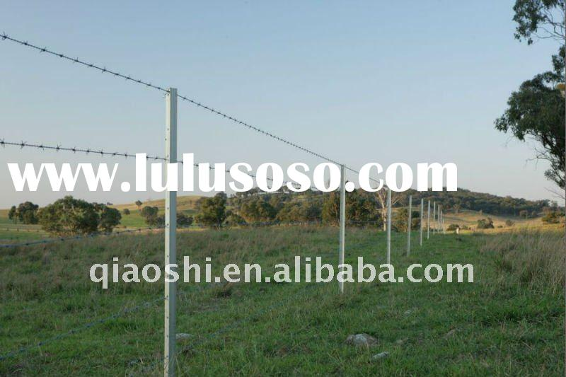 Galvanized star picket with barbed wire for fence