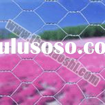Hexagonal Wire Mesh/Poultry Netting/Chicken Mesh