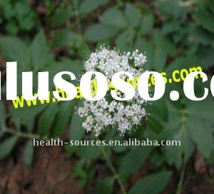 Valerian root extract powder cctive ingredients valeric Acid