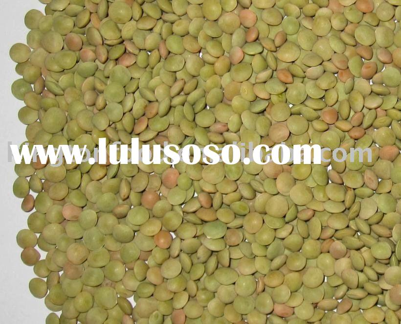 how to cook green lentils laird
