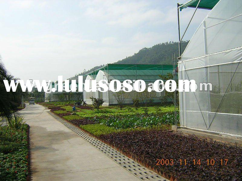 Economical commercial greenhouse