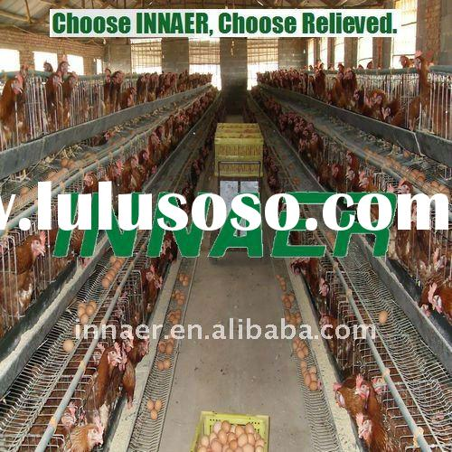 Supply high quality chicken cage used poultry farm for Nigeria