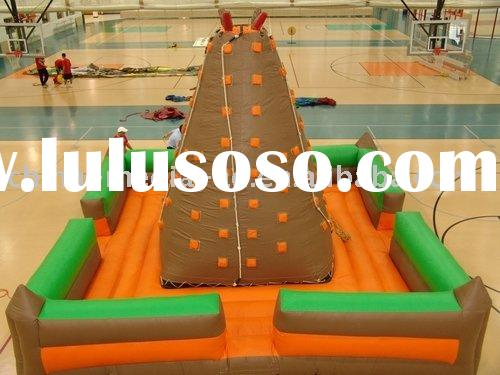small Inflatable rock climbing wall palm tree
