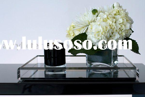 Acrylic Plastic Serving Tray