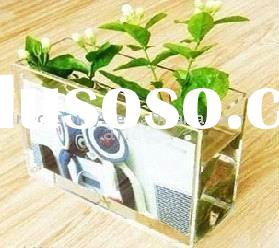 Acrylic Vase with photo/picture frame(FV-B-081)