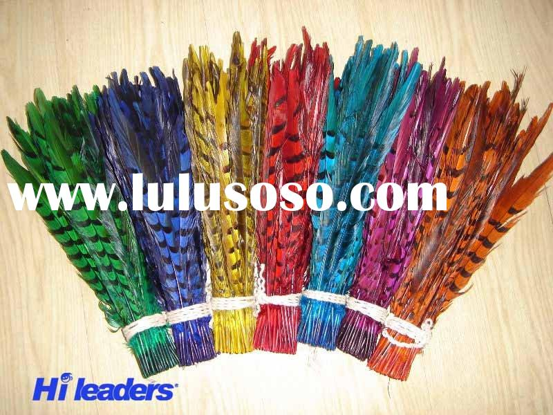 Decorative dyed reeves or lady amherst pheasant tail feather