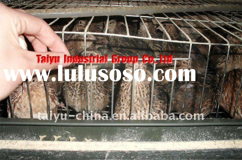 High Quality Quail Cage for sales