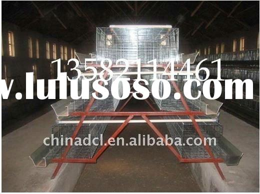 type automatic egg chicken layer cage