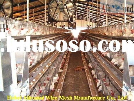 Automatic poultry layer cage systems