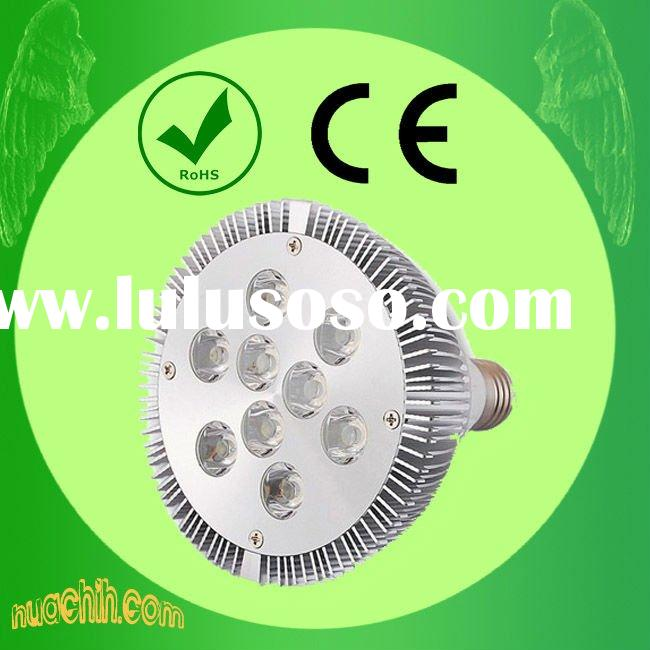 12 Volt LED Spot Light