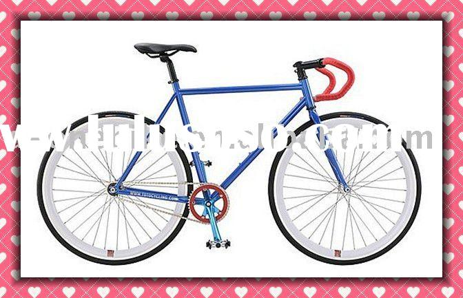 giant fixed gear bike/road bike/mountain bike/racing bike/city bike