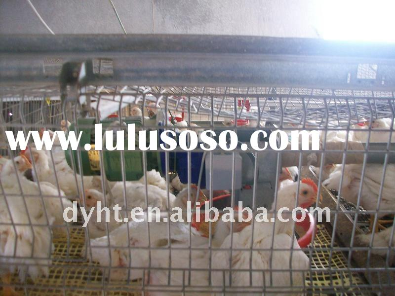 automatic poultry farming machines -the broiler cage