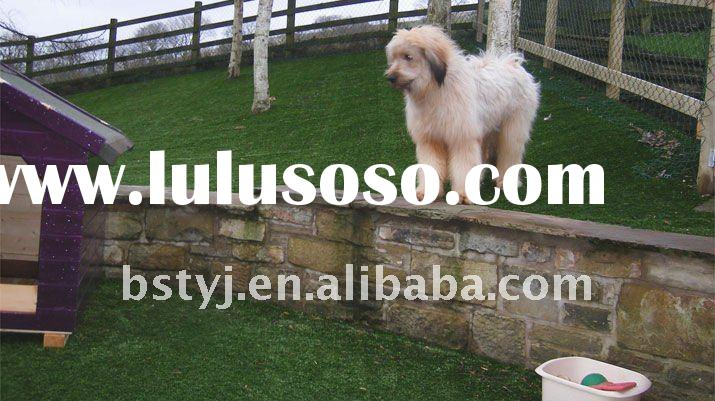 Artificial Grass for Dogs & Garden