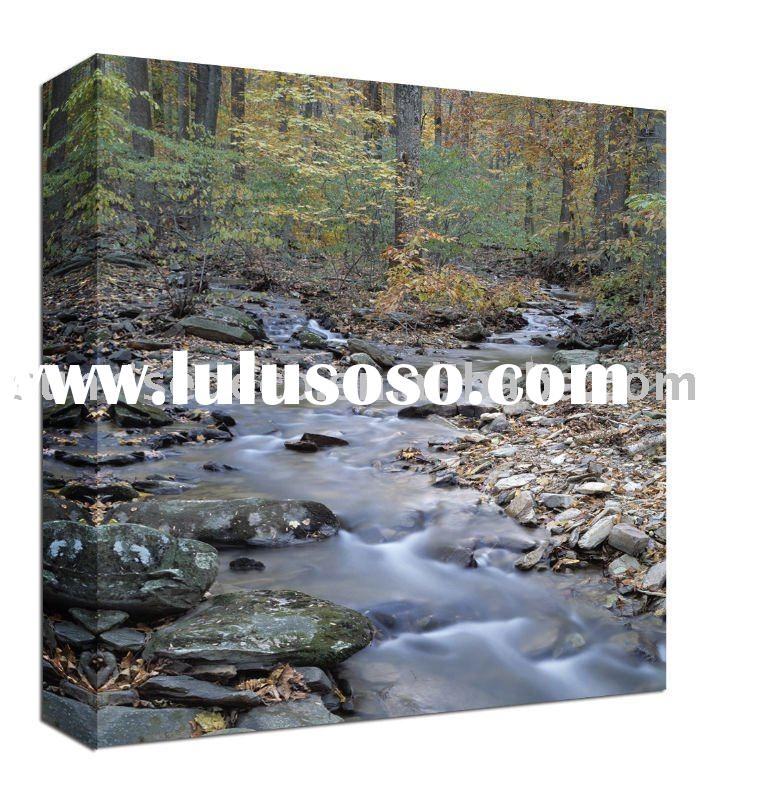 CANVAS FLOWER OIL painting with photo frame