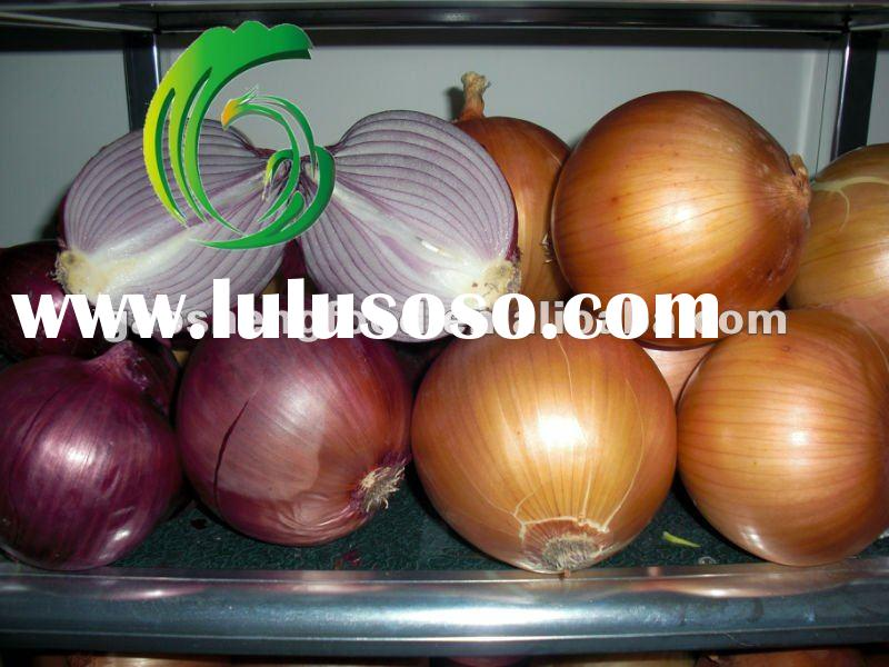 Fresh Yellow Red Onion