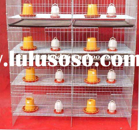 poultry cage/fox cage/rabbit cage/cage/chicken cage/pigeon cage